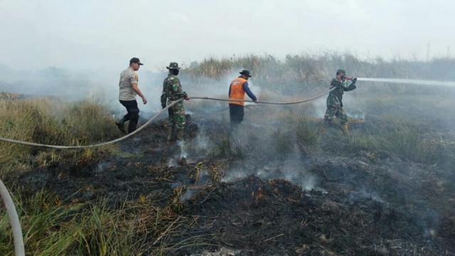 Permalink ke Dandim Palembang Padamkan Kebakaran Lahan