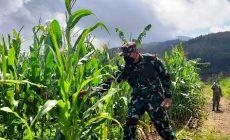 Permalink ke Berpuasa, Brigjen TNI Kunto Arief Wbowo: Hendak Tidak Menghalangi Aktivitas
