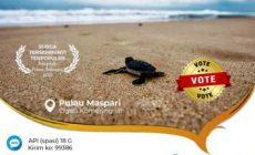 Permalink ke Antara Maspari, Penyu Sisik dan Cerita Bajak Laut